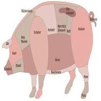 SchweineFresser