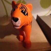 Theobald Tiger